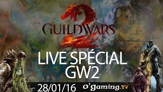 Live spécial GW2 du 28/01/16 avec Elfhorys