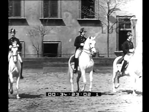 Még a karmester is a lovakat nézi: Bécsi Spanyol Lovasiskola
