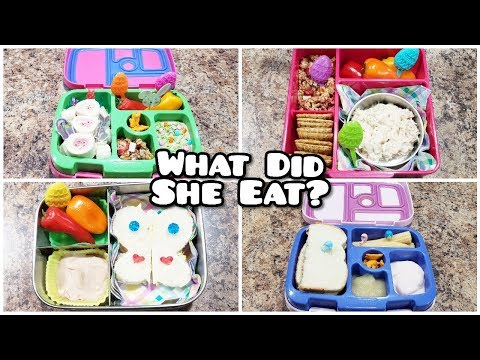 Kid School Lunches + What What She Ate - Bento Styled Lunches - Bella Boo's Lunches