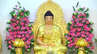 ĐĐ. Thích Giác Nhàn Hướng Dẫn Lạy Phật