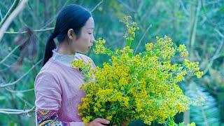 Millet porridge and chrysanthemum tea  (wild chrysanthemum flowers 菊花 JúHuā)