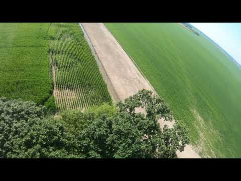 Fungicide from above