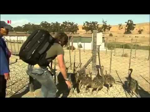 Andreas Kieling Mitten in Südafrika 1 Die Westküste