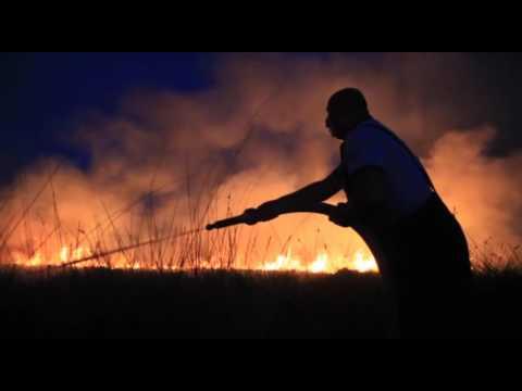 Milas'ta mera yangını