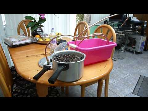 How to make a still / distiller to extract any essential oils from plants. Lavender oil shown.