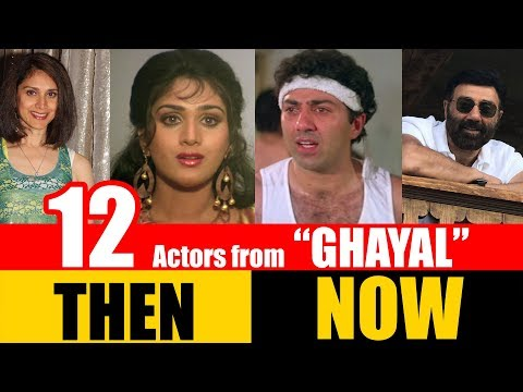 "12 Bollywood Actors from ""GHAYAL"" 1990 
