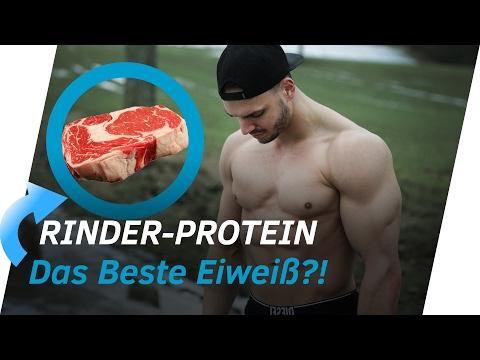 RINDER-PROTEIN FÜR MUSKELAUFBAU!? 99% Eiweiß-Anteil 💪 | Andiletics