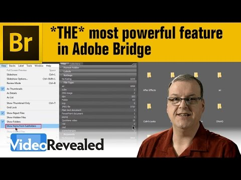 THE most powerful feature in Adobe Bridge