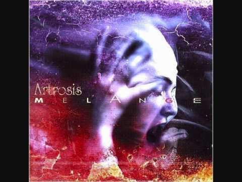 Tekst piosenki Artrosis - Mało słów po polsku
