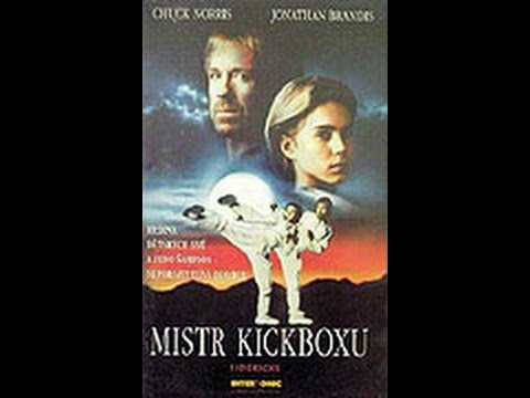 Mistr kickboxu