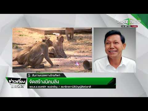 จัดสร้างนิคมลิง : ขีดเส้นใต้เมืองไทย   15-05-61   ข่าวเที่ยงไทยรัฐ