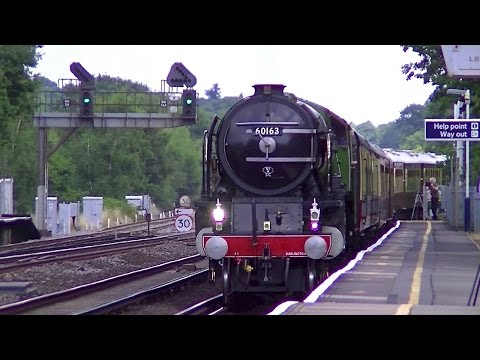 60163 'Tornado' steam debut on The British Pullman at Byf...