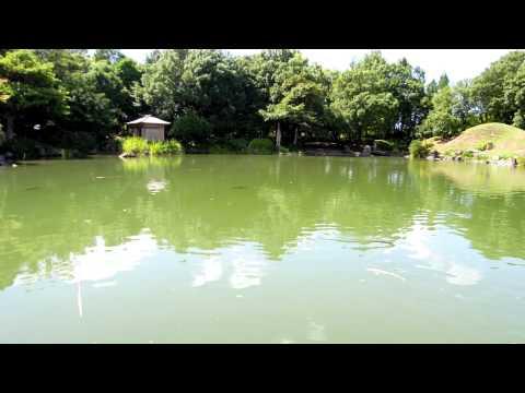 旅レポ【福井県】養浩館庭園
