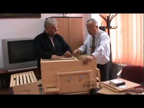 Renumitul apicultor Dan Puisoru discuta cu Proful Online despre