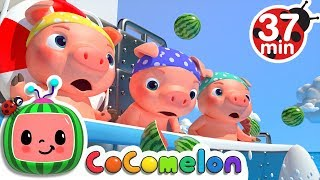 Video Three Little Pigs 2 (The Big Ship Sails on the Alley Alley Oh) | +More Nursery Rhymes - CoCoMelon MP3, 3GP, MP4, WEBM, AVI, FLV Maret 2019