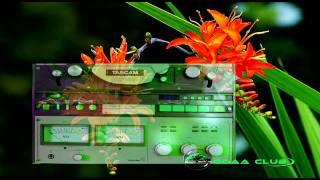 Oromo Music - Ali Shabbo Duraan Walljaalannaa. Audio Music Only.