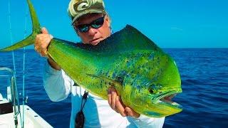 Bluefin Tuna Frenzy - Country Girl Charters