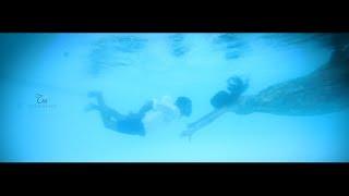 Kerala Best Underwater save the date Irene & Paul