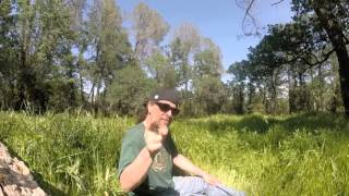 Nature Dabbing Session by Sound Experiments