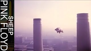 Pink Floyd - Sheep