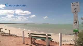 Denham Australia  City new picture : 【HD】 Denham, WA, Australia | オーストラリア デナム