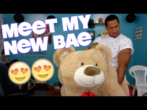 Sex with Stuffed Animals