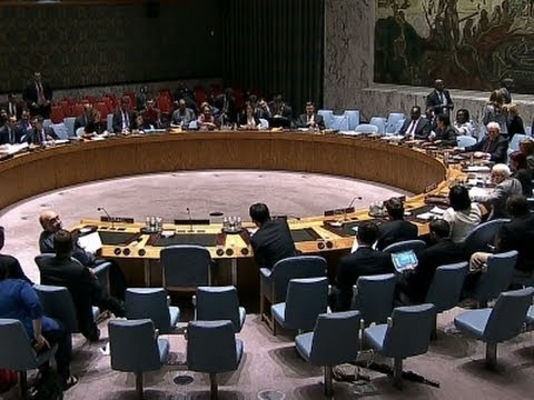 calls - The U.N. Security Council called for