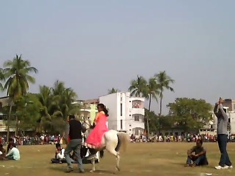Video Tasmina fast again Horse run in naogaon -তাসমিয়া আবারো ঘোড় দৌড়ে প্রথম download in MP3, 3GP, MP4, WEBM, AVI, FLV January 2017
