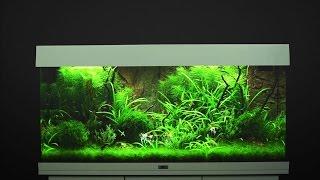 Video Aquarium einrichten JUWEL Rio 180  / Tutorial MP3, 3GP, MP4, WEBM, AVI, FLV Agustus 2019