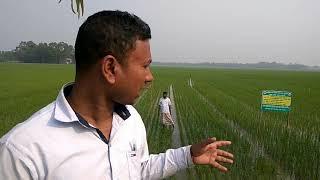 Modern agricultural concept: লাইন-...