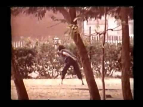 shaw brothers - A rare documentary featuring behind the scenes footage of the Shaw Brothers studio. With David Chiang speaking English.