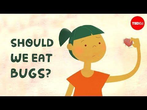 Should we eat bugs? – Emma Bryce