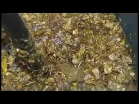 """معامل في إيران تستخدم """"براز الحيوانات"""" في إنتاج """"المعسّل"""" الذي يوضع في النركيلة (الشيشة)..."""