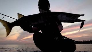 Download Video Mancing casting barakuda di pantai Gabur Doro Marina Semarang (UL part 12) MP3 3GP MP4