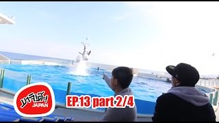 Kamogawa Japan  City new picture : MAJIDE JAPAN : EP13 - 2/4 | CHIBA ที่เที่ยว KAMOGAWA SEAWORLD