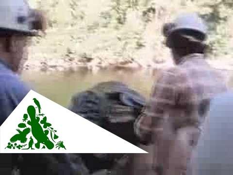 Franklin River Campaign Video 2