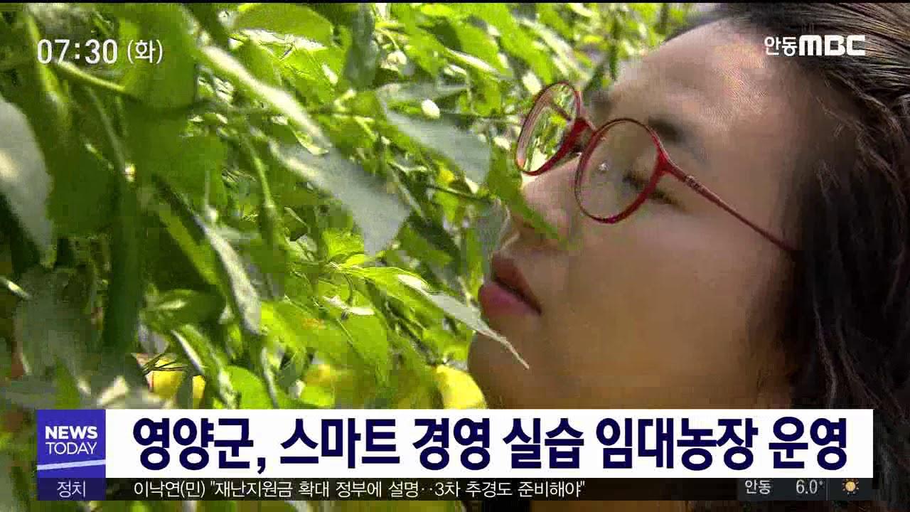 영양군, 스마트 경영 실습 임대농장 운영