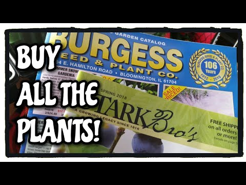 DO NOT ORDER FROM BURGESS!! What Fruit Plants / Trees should I buy for 2018?