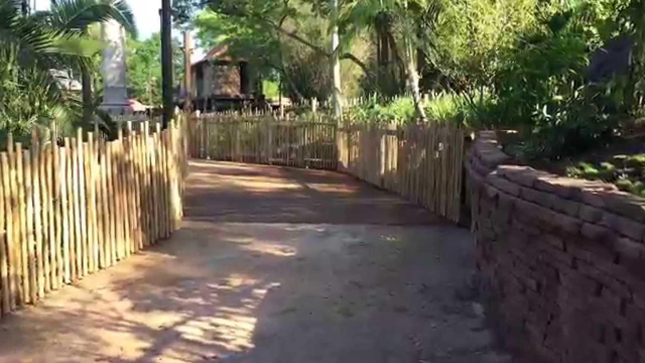 New Asia walkway at Disney's Animal Kingdom