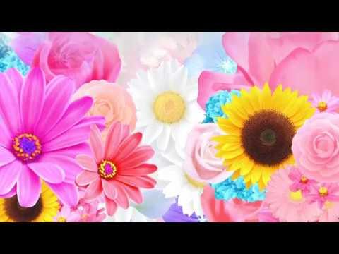 GRIMOIRE  1stフルアルバム「グリモワール」MV Spot