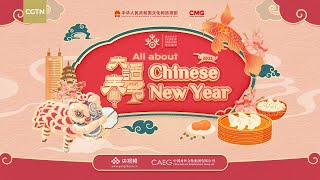 All about Chinese New Year 中国新年