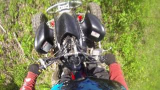 8. Buying a used Honda TRX 450R (2005) race quad