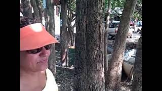El Salvador Sv: Visitando La Laguna De Olomega Y La Laguna Del Jocotal