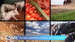 Mercados ao Minuto 07-06