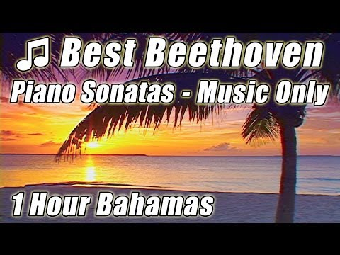 Classical Music for Studying Beethoven Best Piano Sonatas Instrumental Study Songs 1 HOUR Playlist