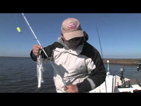 Winter Fishing Tactics for Inshore Louisiana