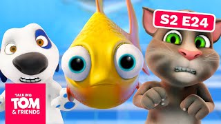 Video Talking Tom and Friends - Fishy Business | Season 2 Episode 24 MP3, 3GP, MP4, WEBM, AVI, FLV September 2019