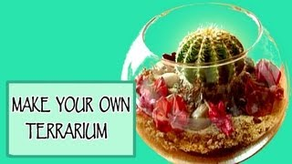 DIY ROOM DECOR ❤ Make your own terrarium! - YouTube