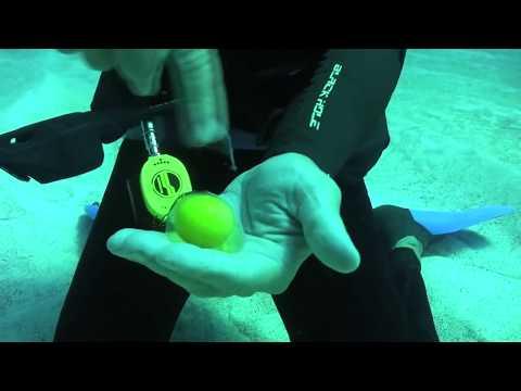 Πως συμπεριφέρεται το εσωτερικό ενός αυγού στον βυθό;
