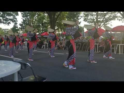 Obon, lễ hội nhật bản